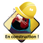 GOULD EN CONSTRUCTION